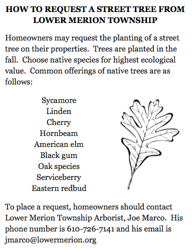 Requesting street tree info.png