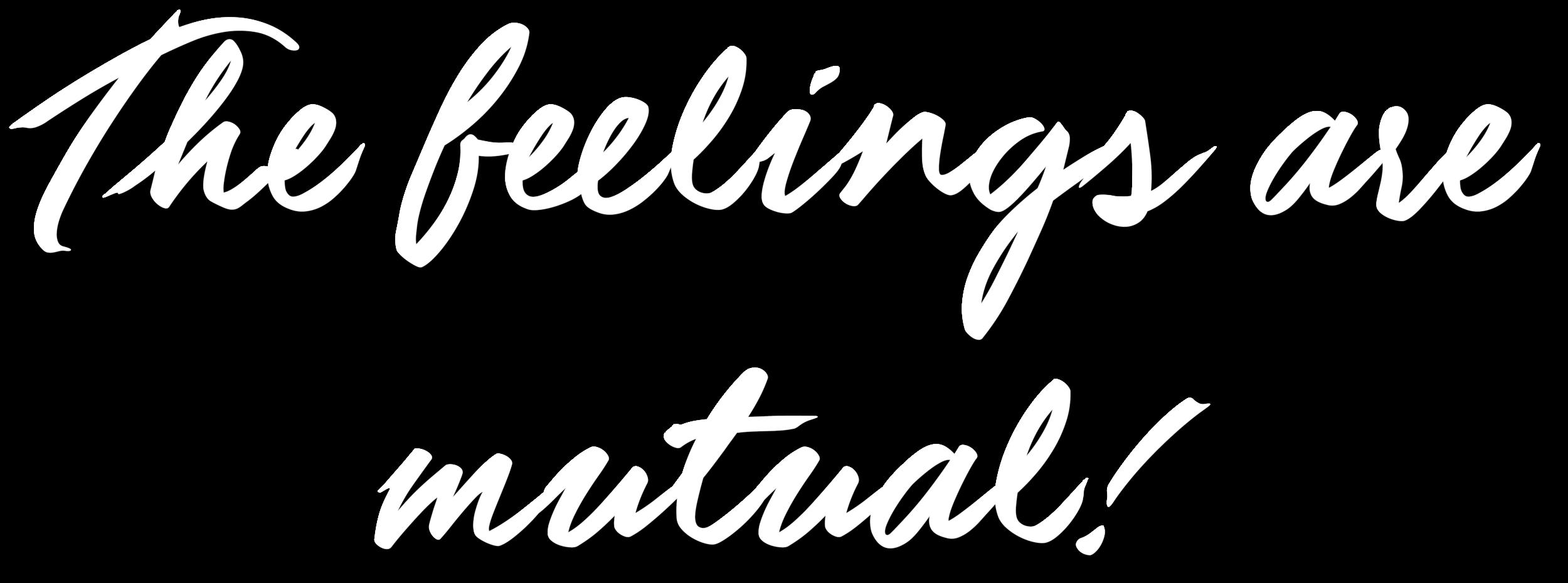 clienttestimonials.png