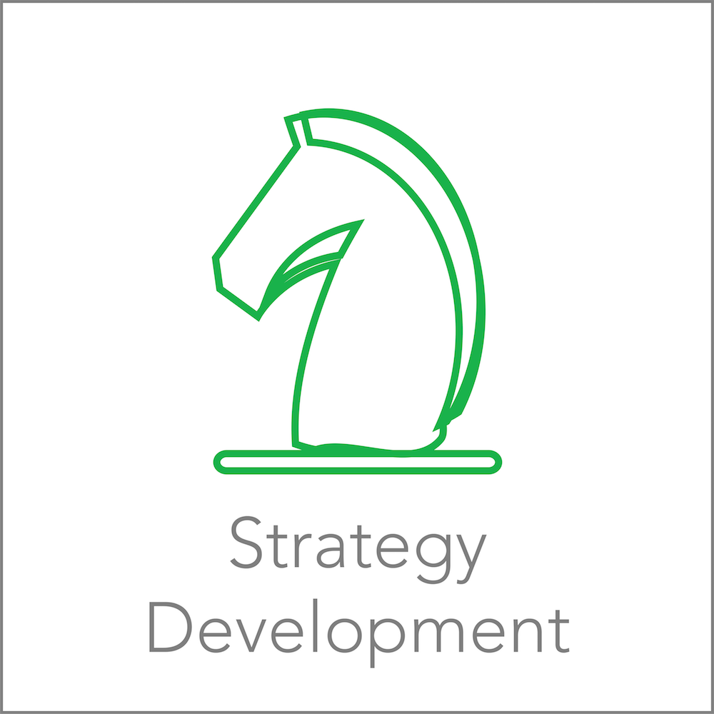 Services | Strategy Development