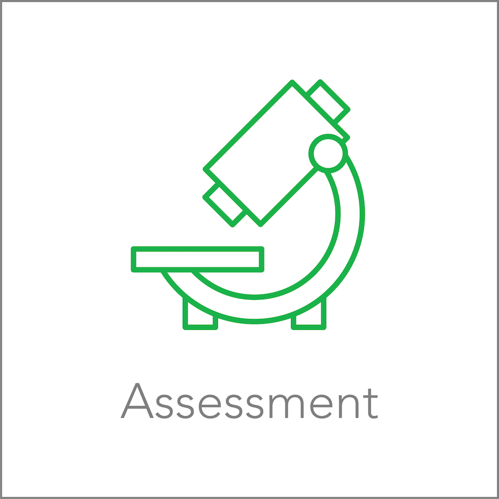 Services | Assessment