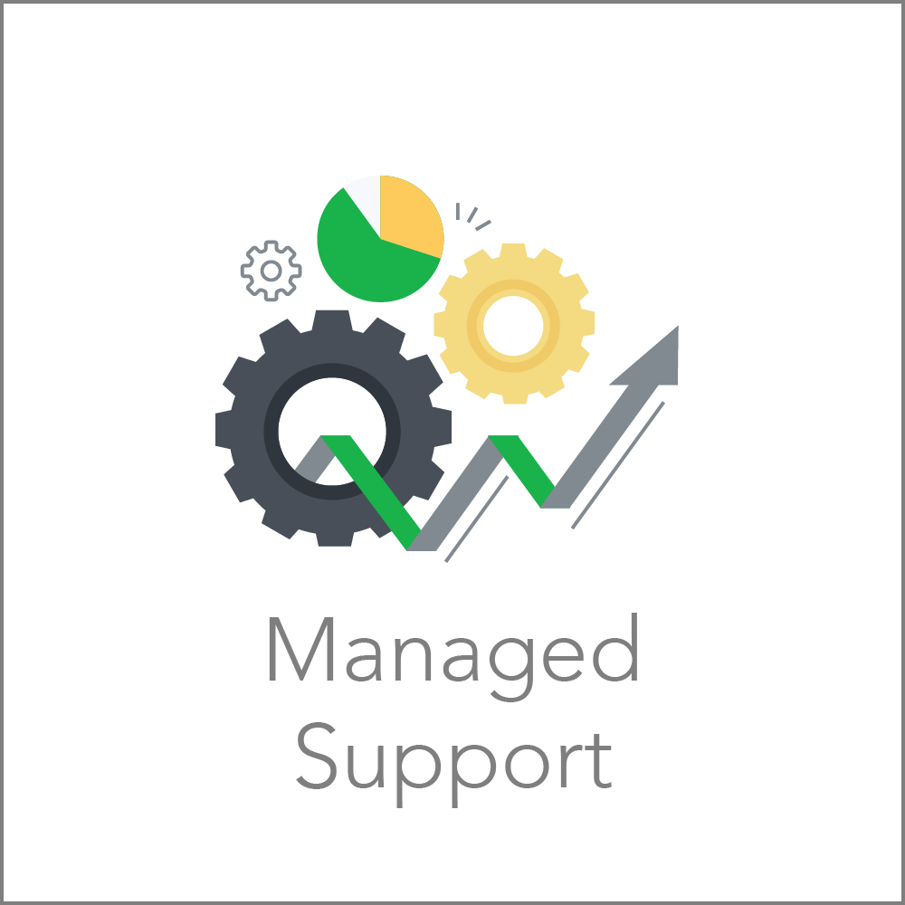 Managed Support.png