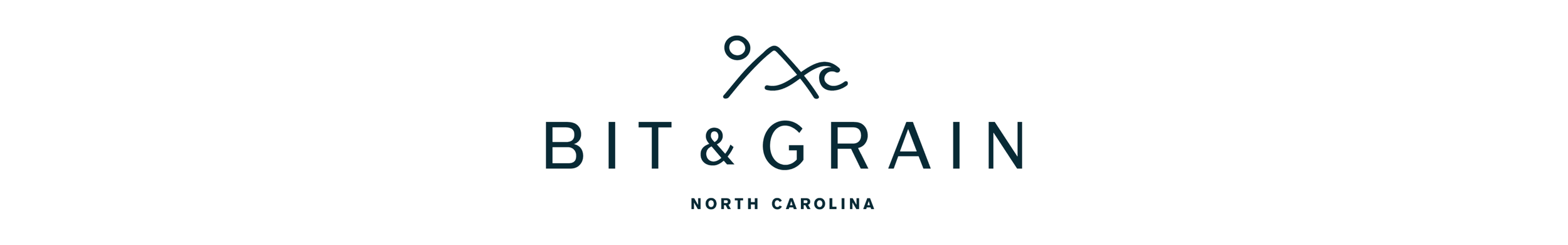 bit and grain logo.png