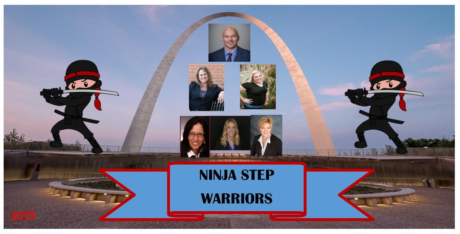 NinjaStepWarriors.png