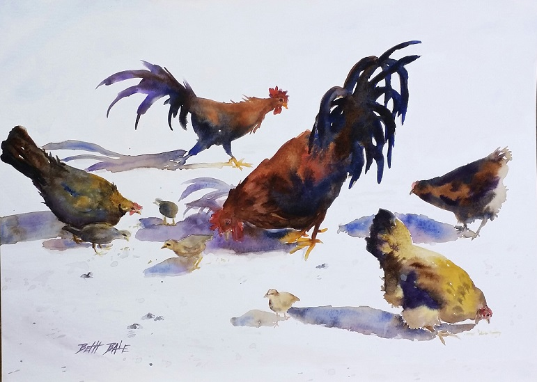 Chickens and Shadows