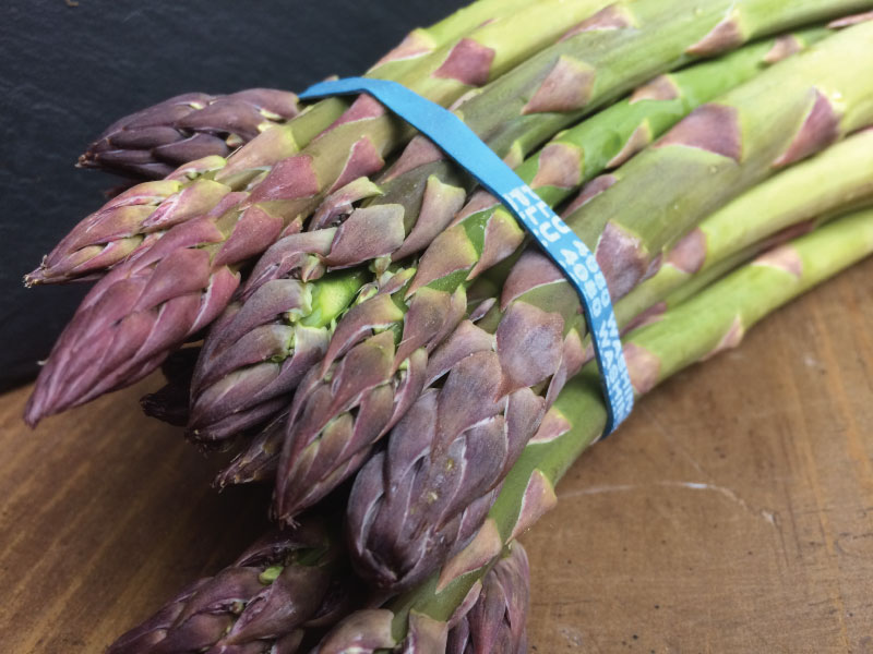 Asparagus2-web.jpg