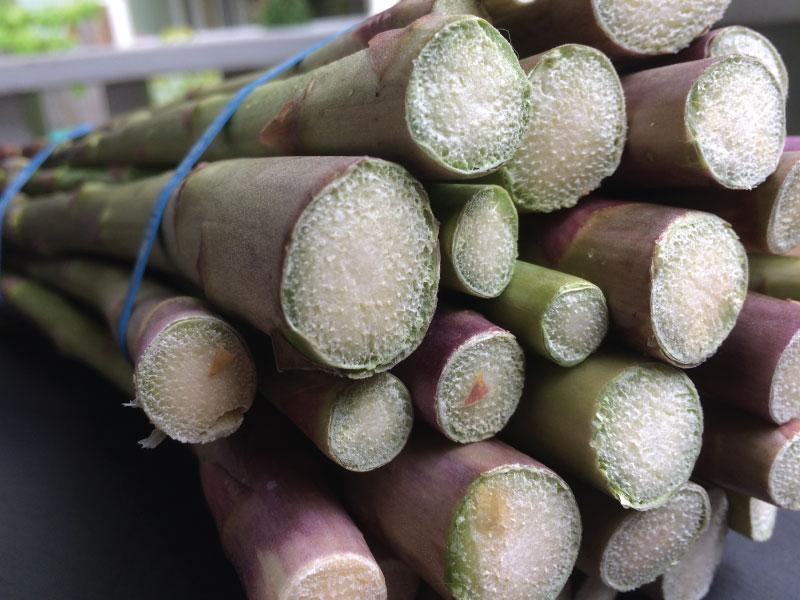 Asparagus-ends-web.jpg
