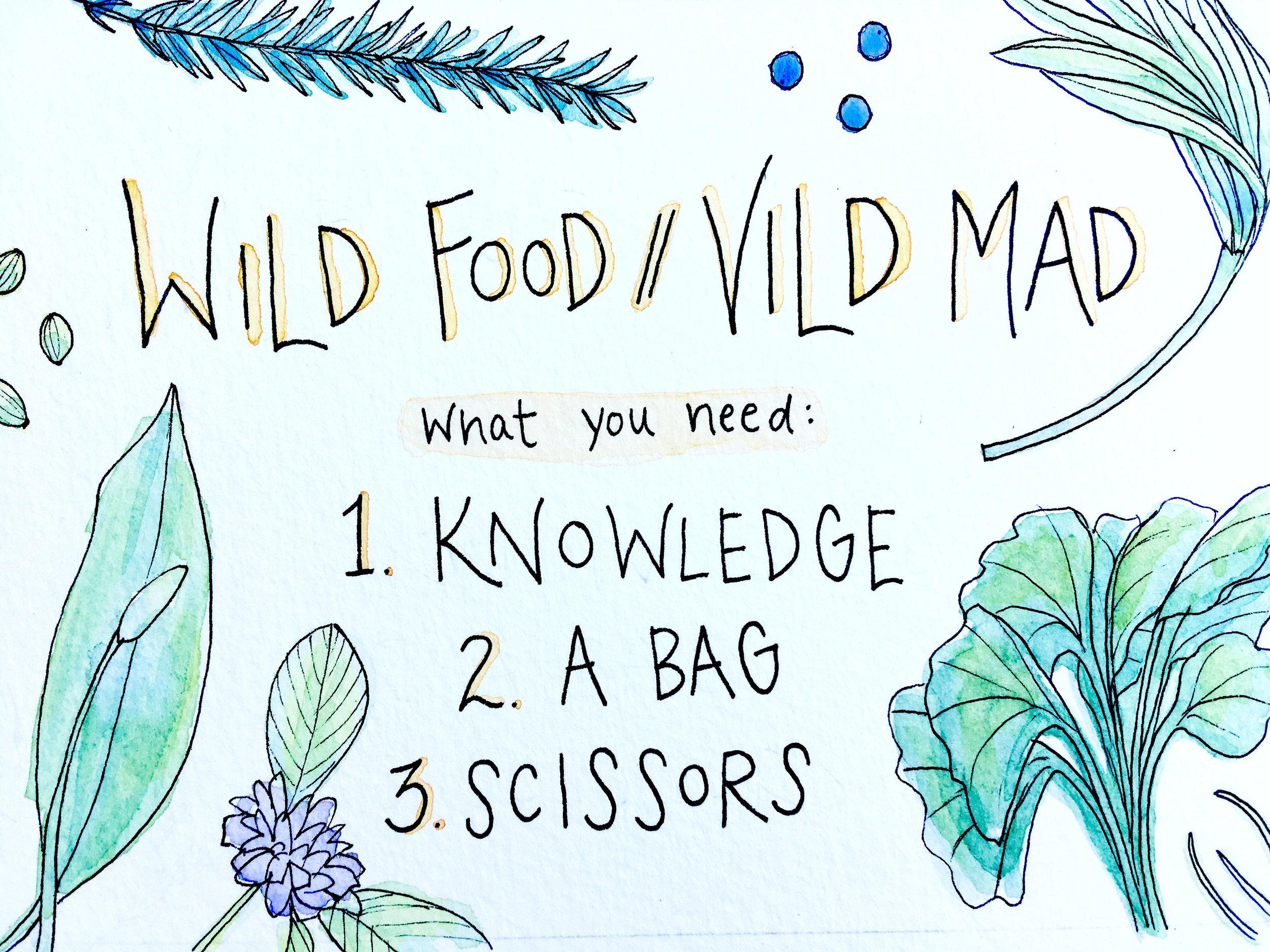 63_Wild Food.JPG