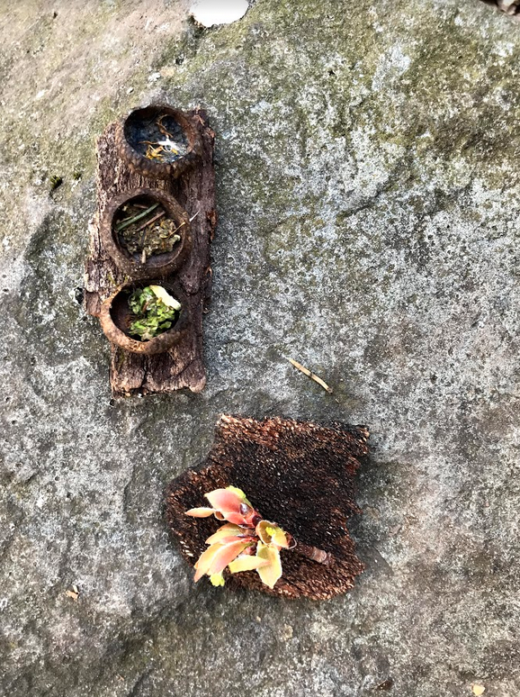 Student's nature art created during her Solo Sit at Consecration Dell.