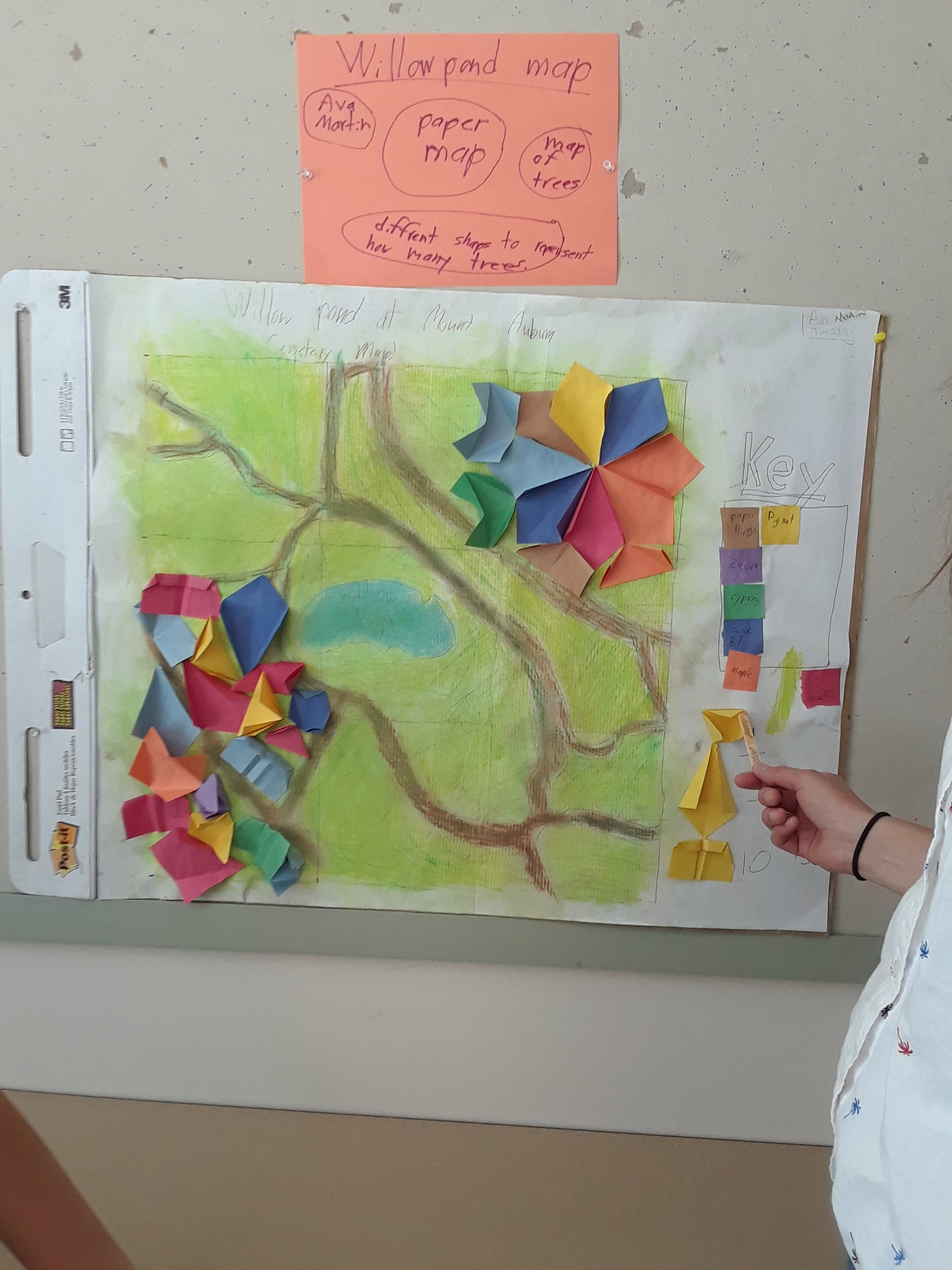A scaled map of Willow Pond and representation of trees found in the area.