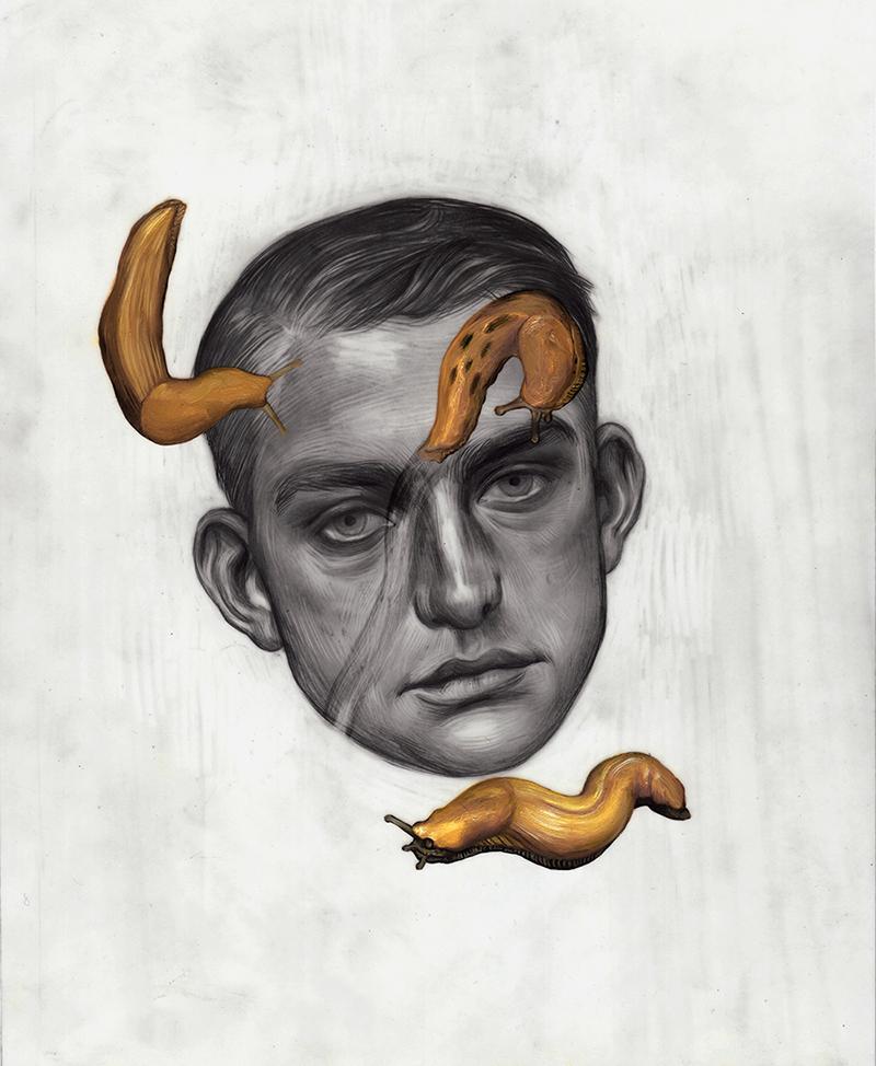 Banana Slugs