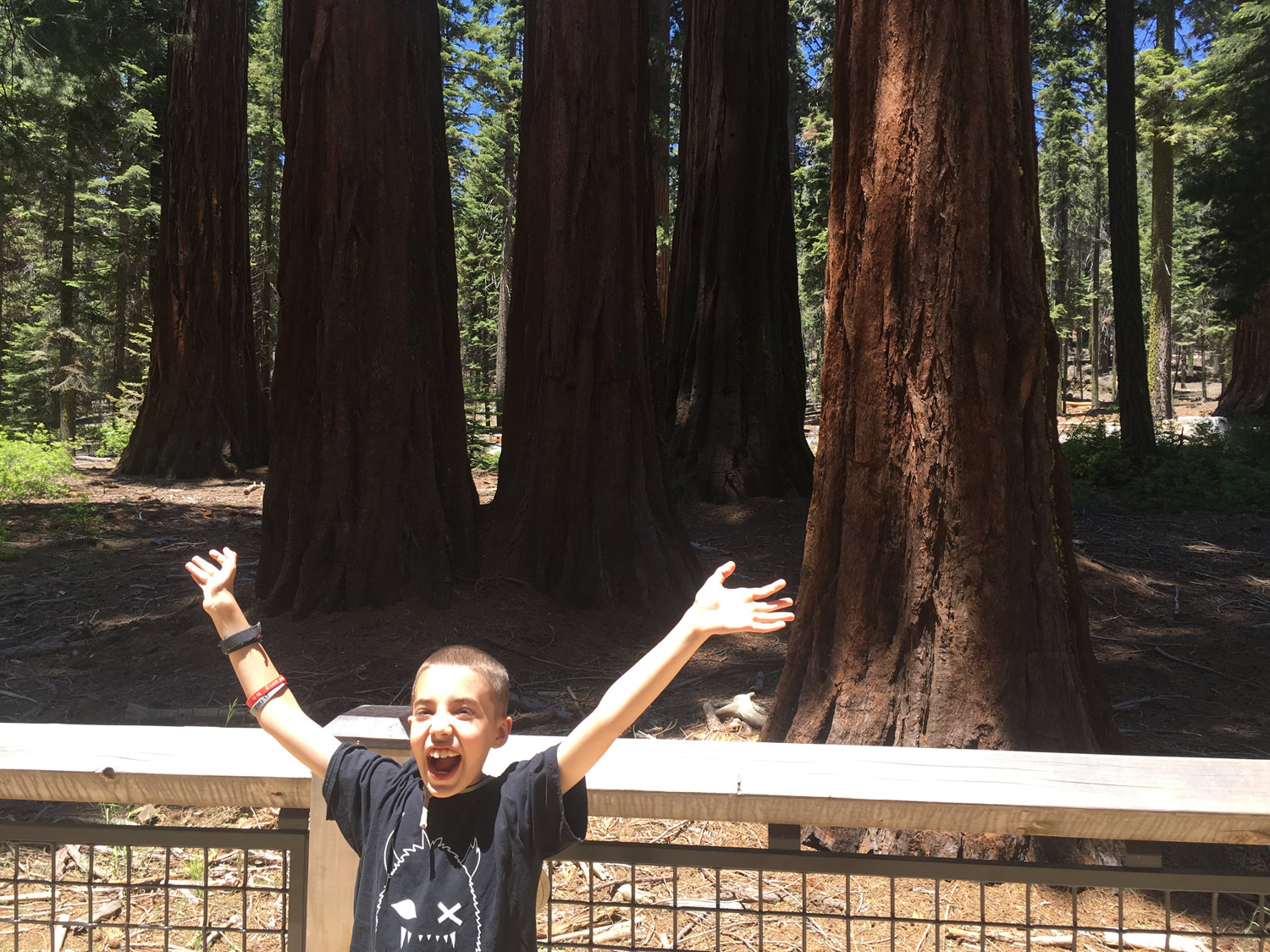 Finally a smile from Ridley! Being at Mariposa Grove was definitely a reason to smile.