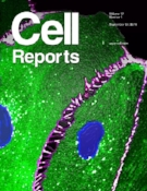 cell-reports-2016.jpg