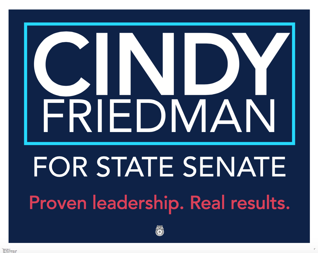 Cindy Friedman campaign poster