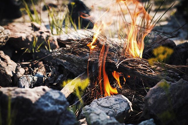 A little campfire to start off the morning. Who's ready to go camping? #outdoors #nature #scenery #camping #fire #campfire #adventure #photooftheday