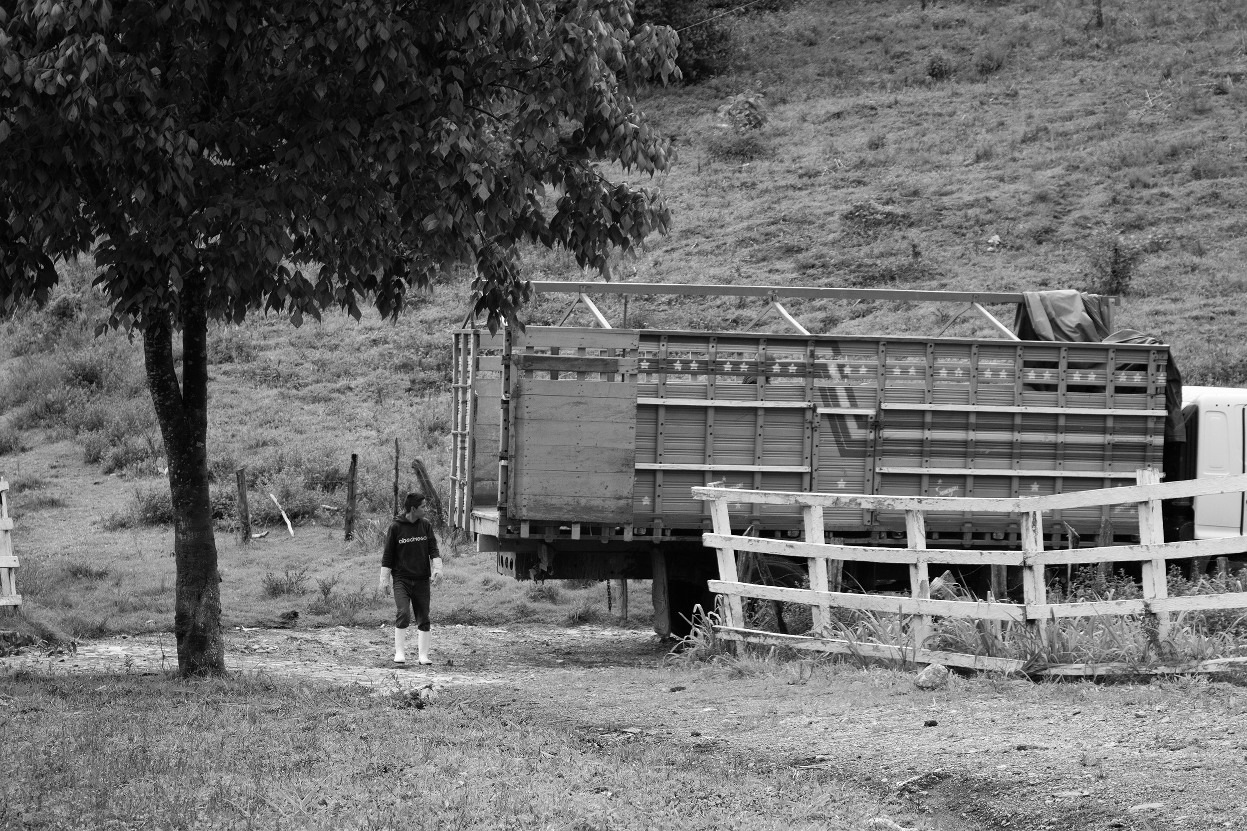 A young man helps guide the truck as it backs up to the honey processing plant.