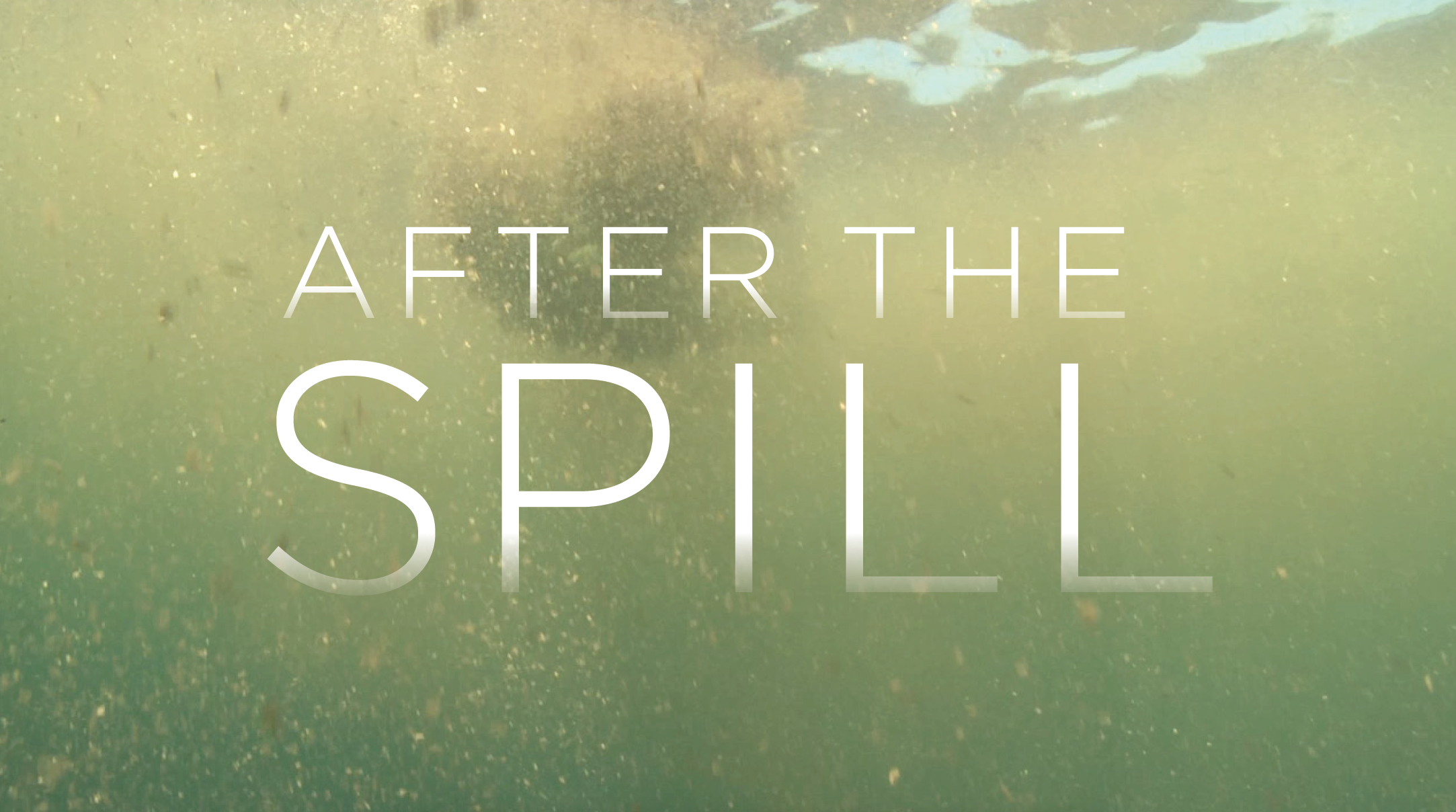 after the spill title card design carla rozman jon bowermaster oceans 8 films