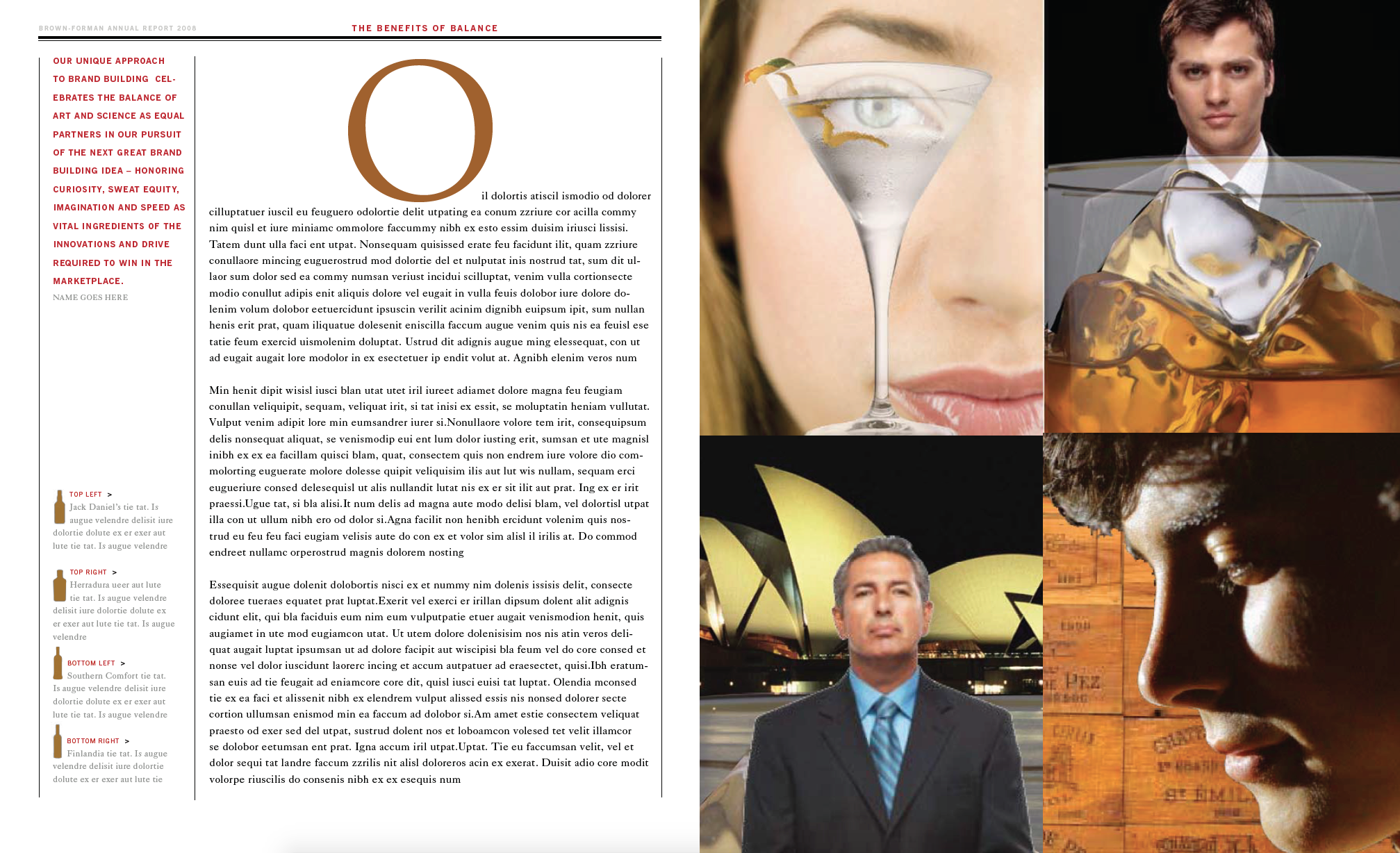 brown forman annual report