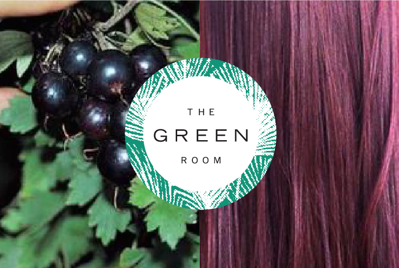 The Green Room Organic Hair Care.png