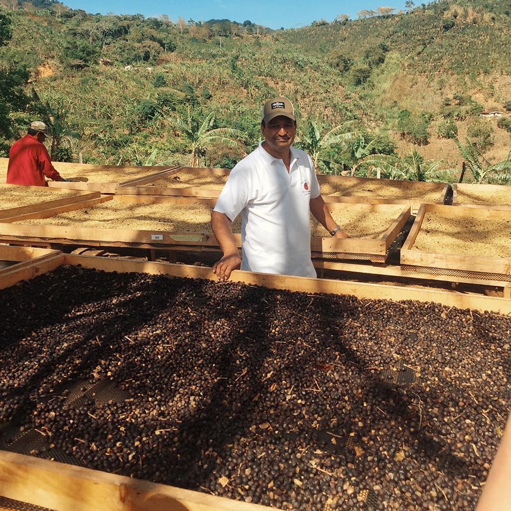 Don Cesar Urena and his coffee at San Isidro de Leon Cortez in Costa Rica