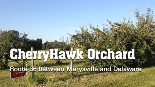 cherryhawk-orchard-marysville-ohio.PNG