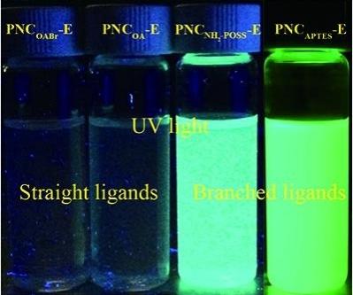 Perovskite quantum dots light up the future
