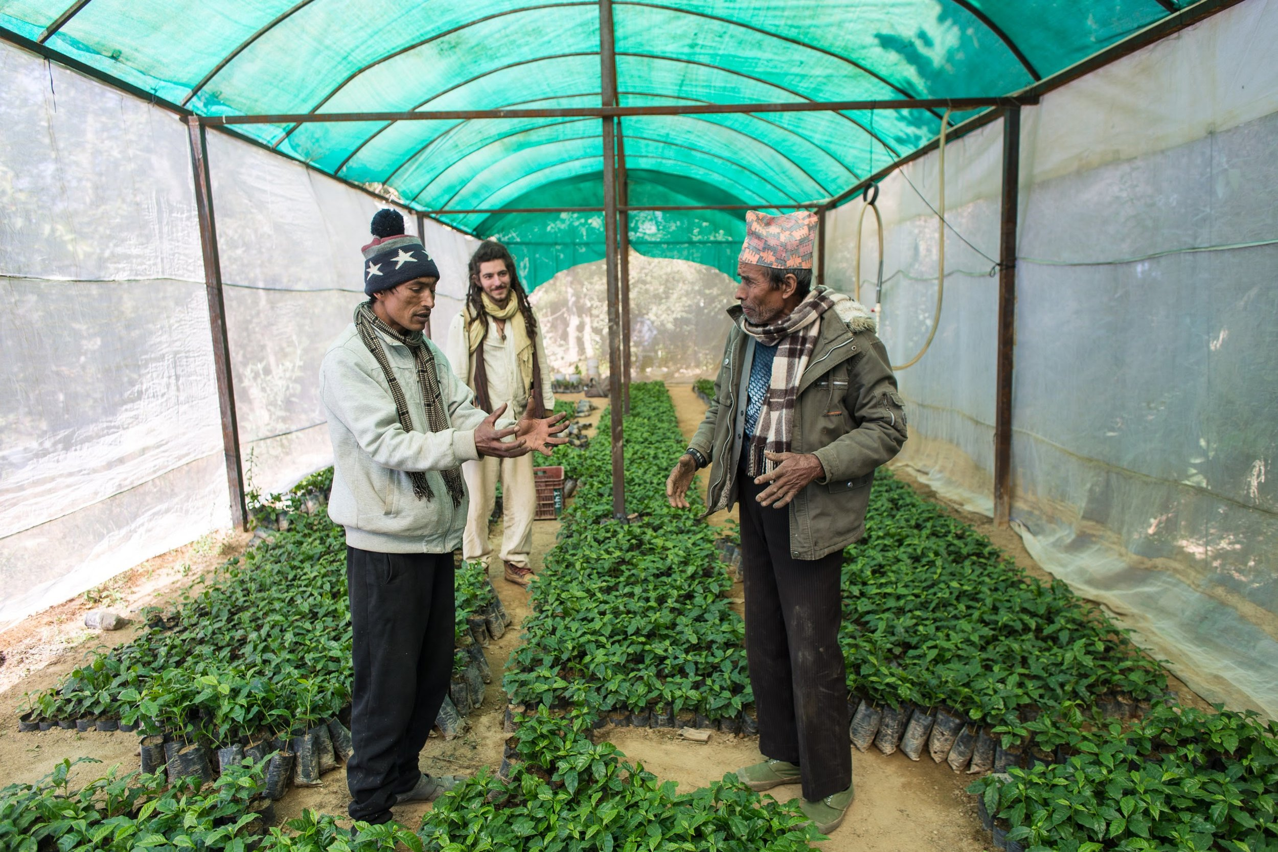 Narayan, Greg, and Shyam talking coffee in the Conscious Impact greenhouse.