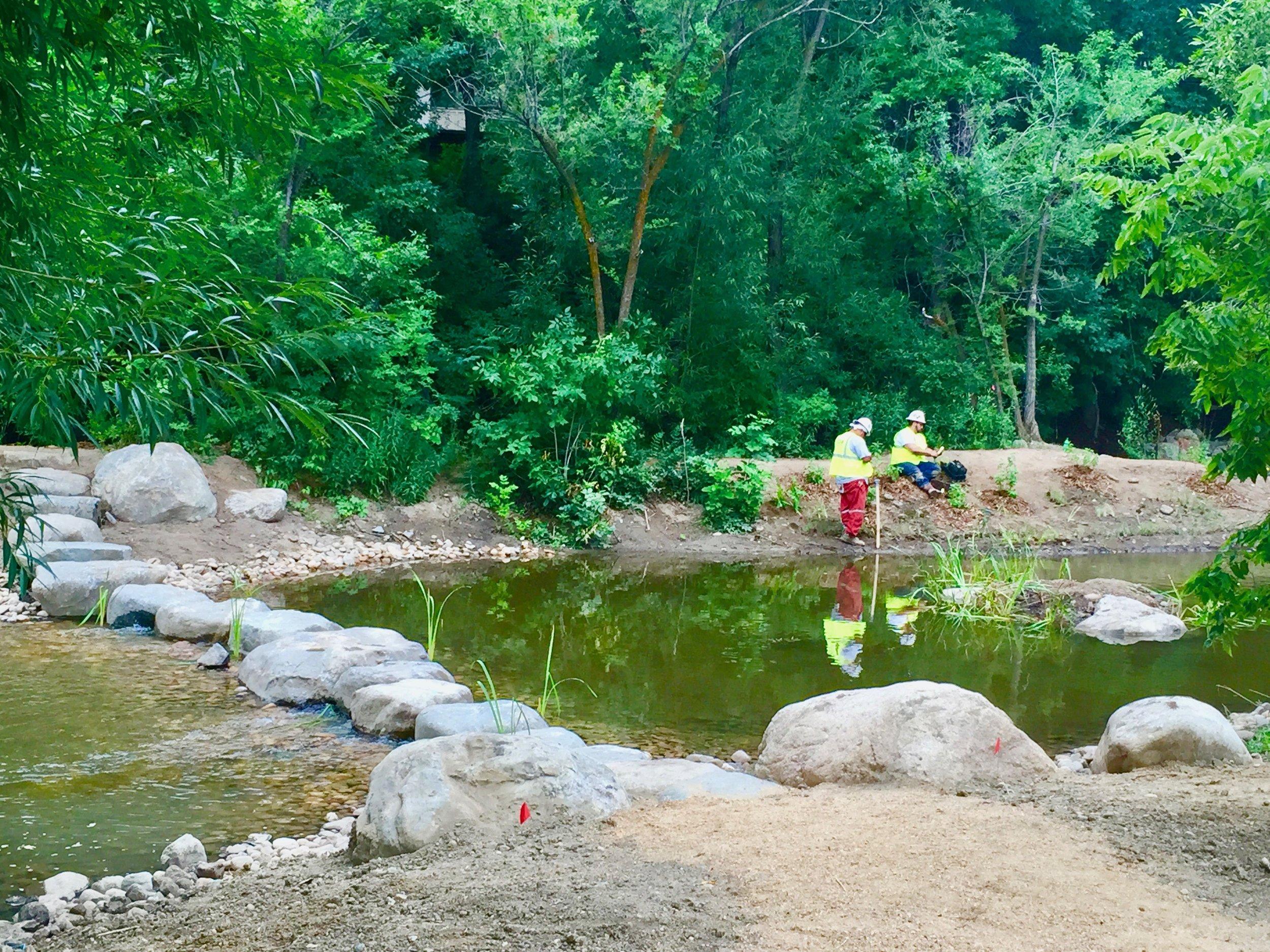 Riparian Ponds Rocks.jpg
