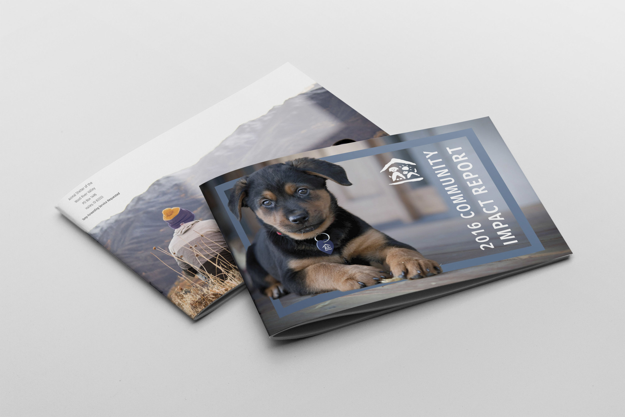 - To better understand Mountain Humane's impact and achievements, check out last year's Community Impact Report!