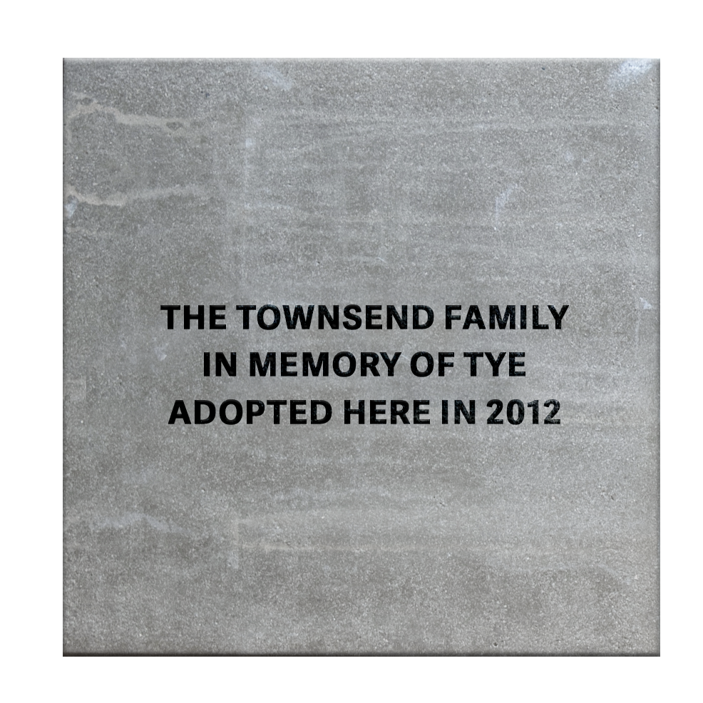 Adopted Here.png