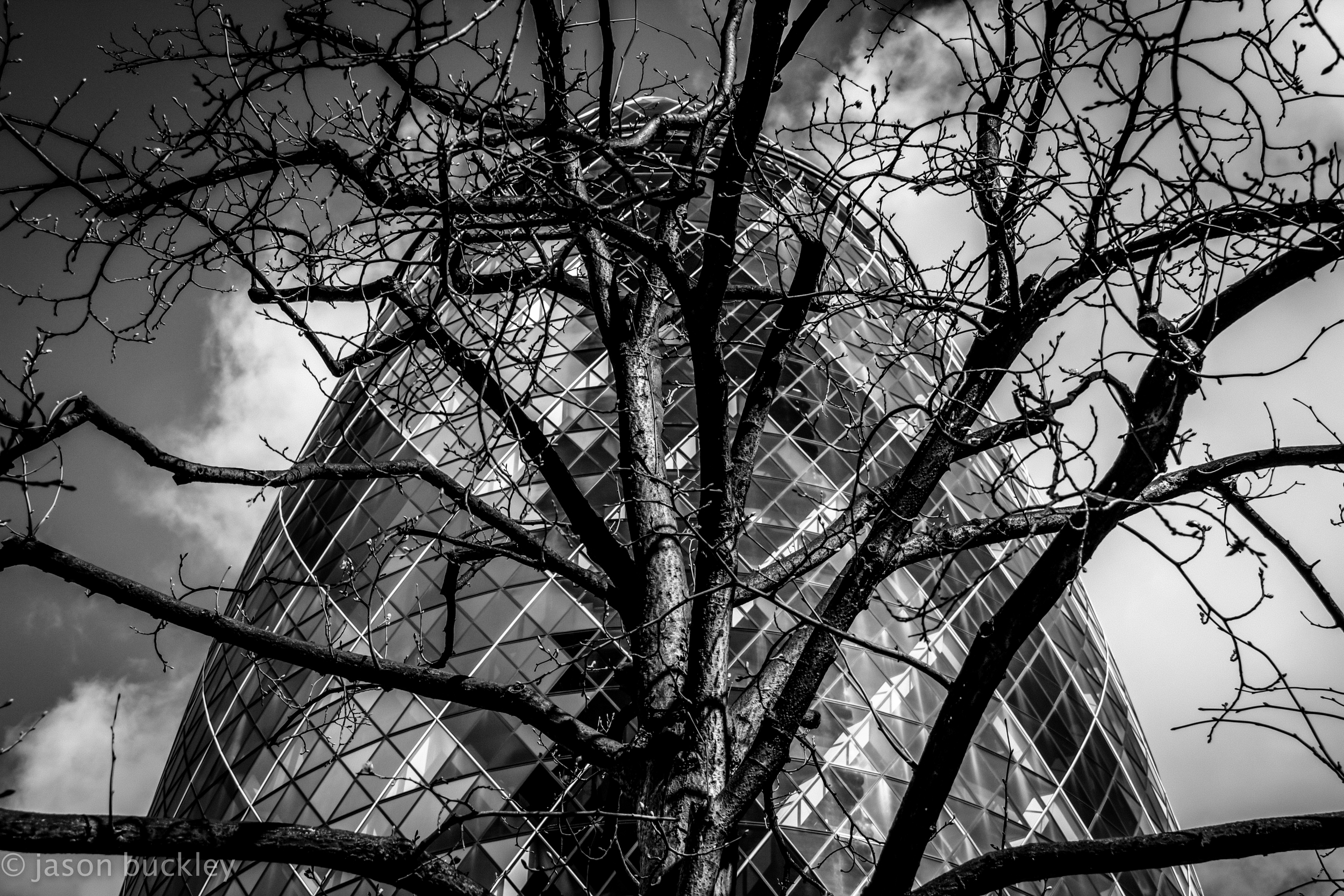 london_ref-15.jpg
