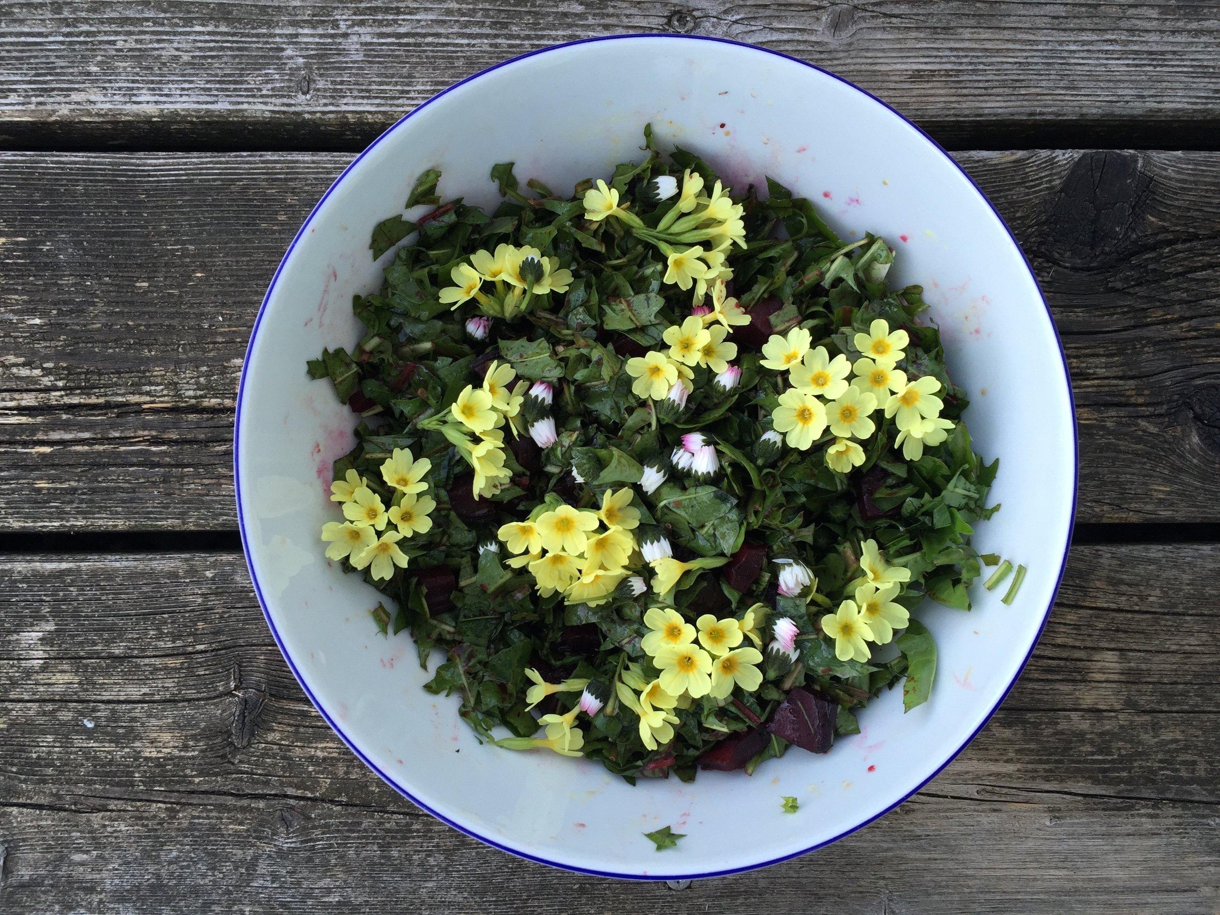 Löwenzahn Rote-Rüben Salat mit Himmelschlüssel_Nina Mandl TCM.jpg