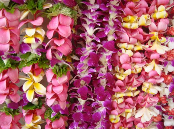 Be greeted with a Fresh Hawaiian Lei upon arrival
