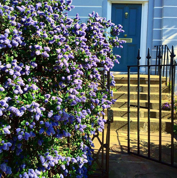 Colours to paint the front door