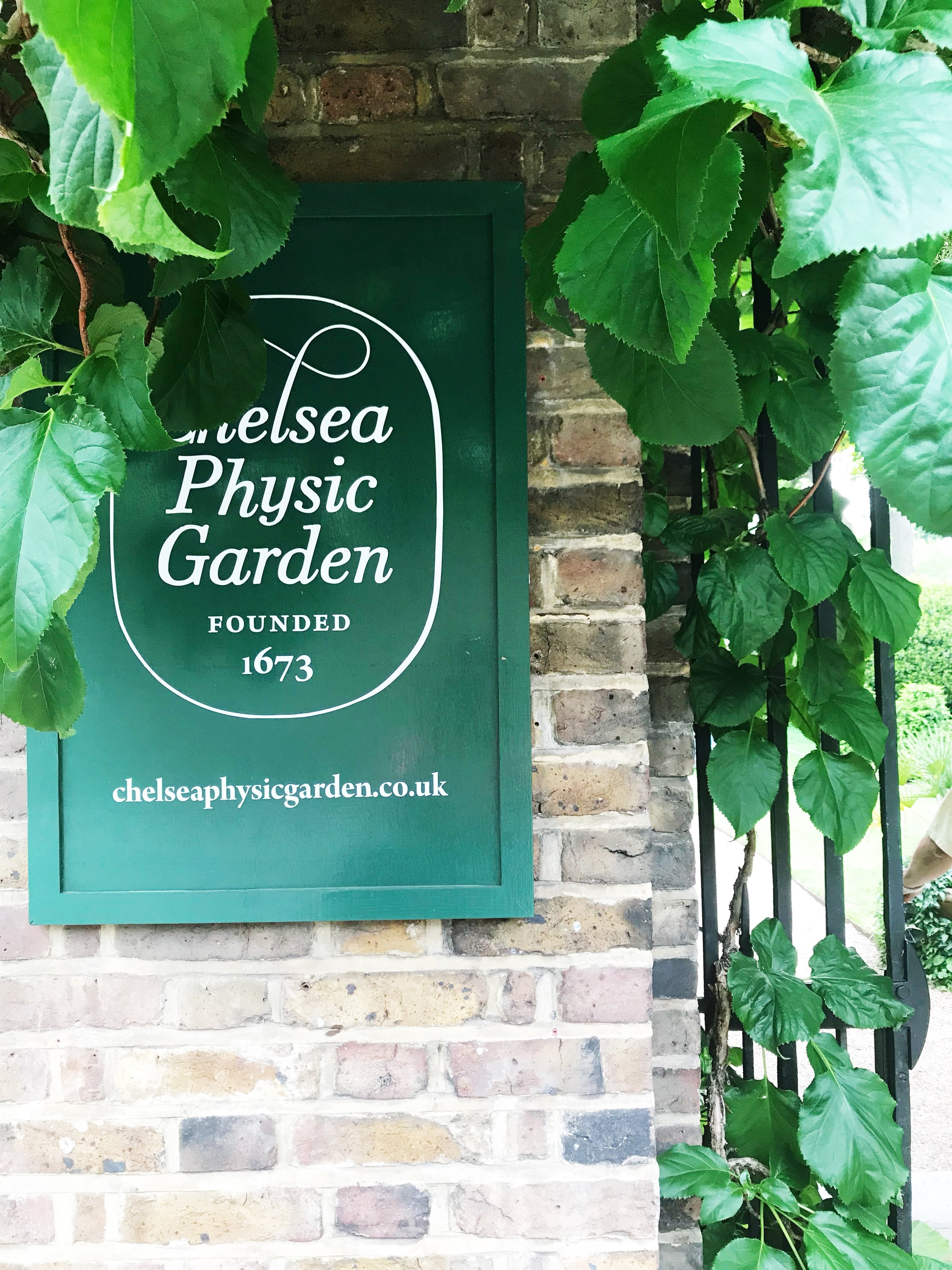 Physic Gardens in Chelsea