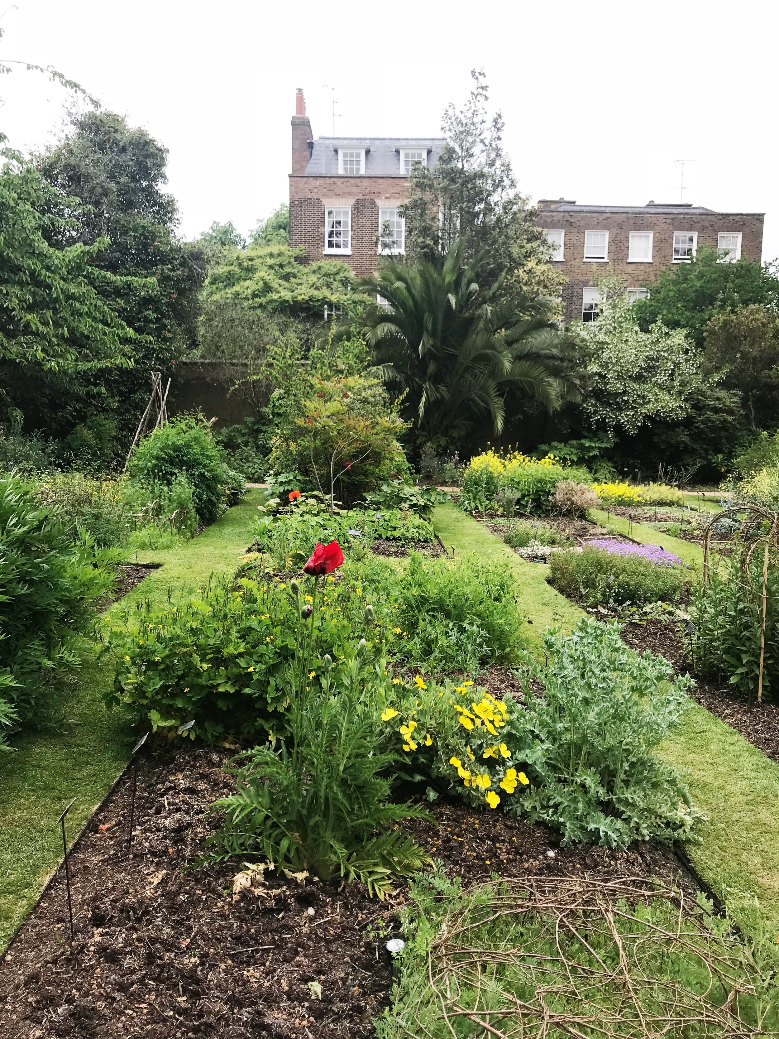 A visit to the Chelsea Physic Gardens