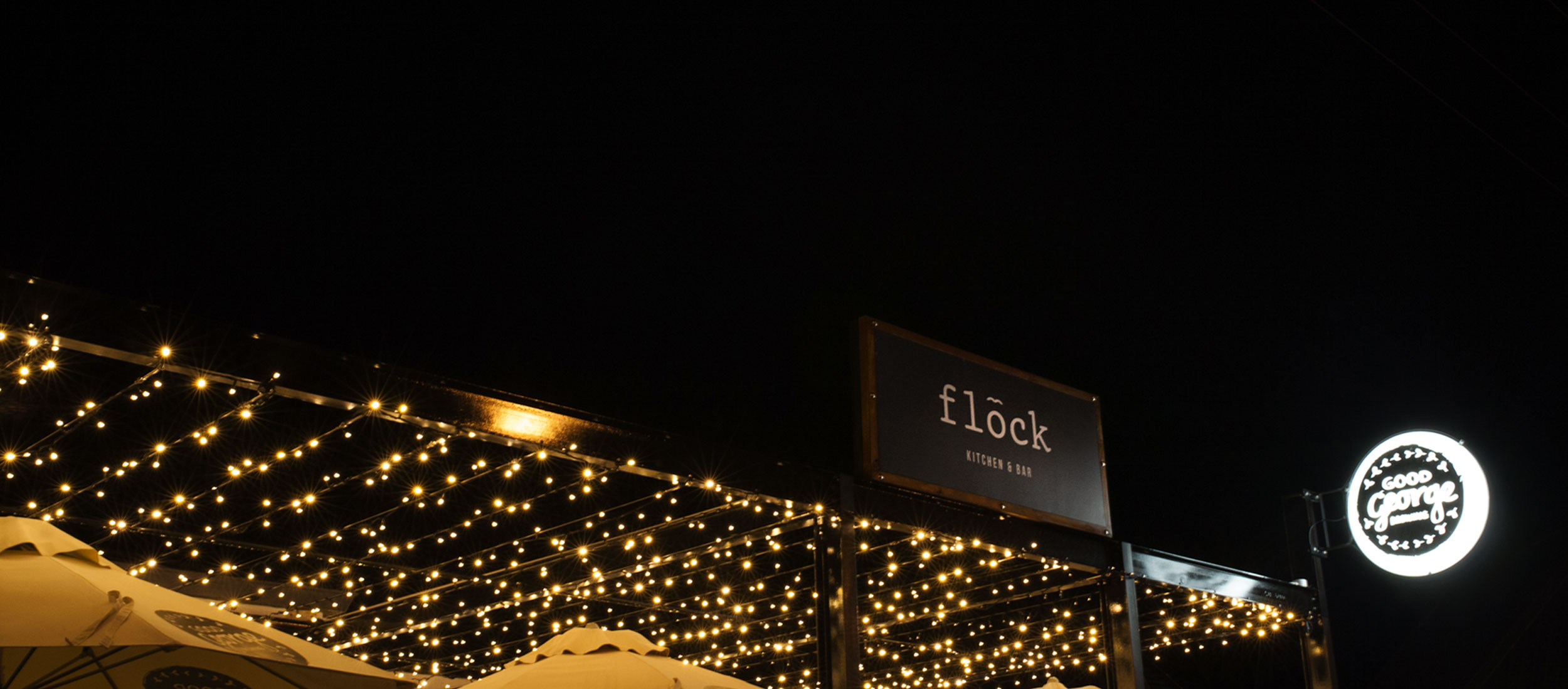 FLOCK-NIGHT-NEW.jpg