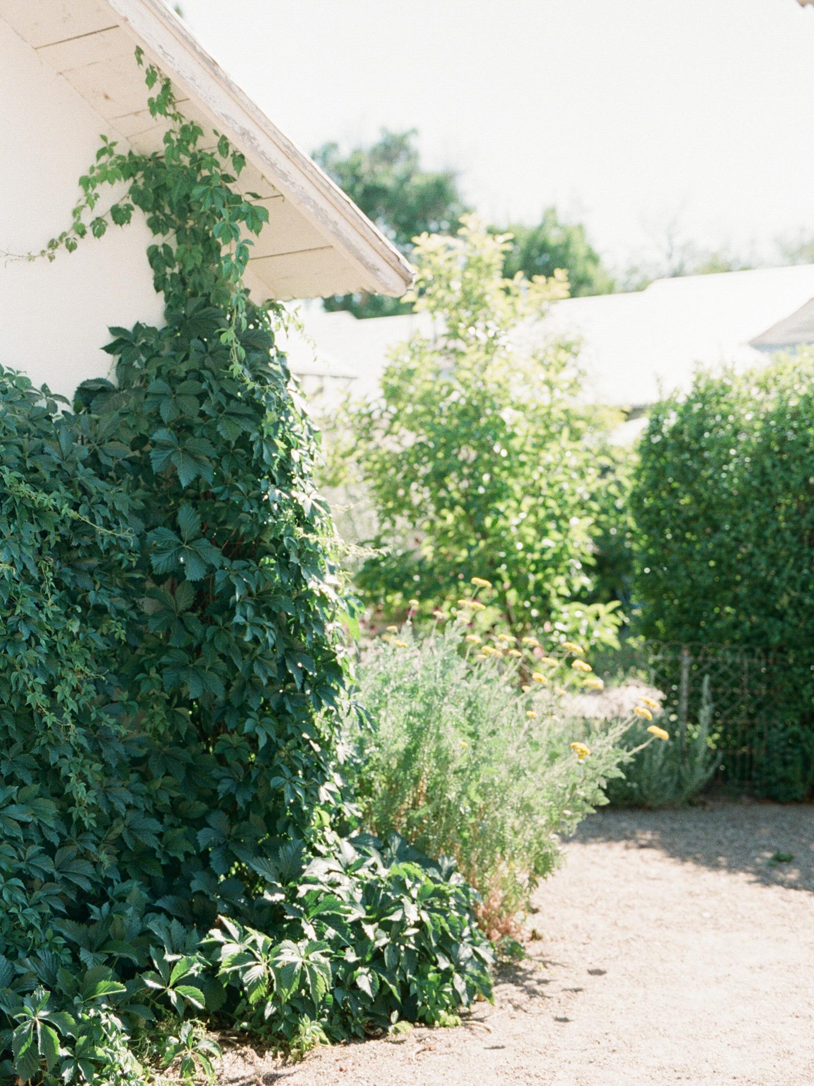 LerinaWinter-0204-2.jpg