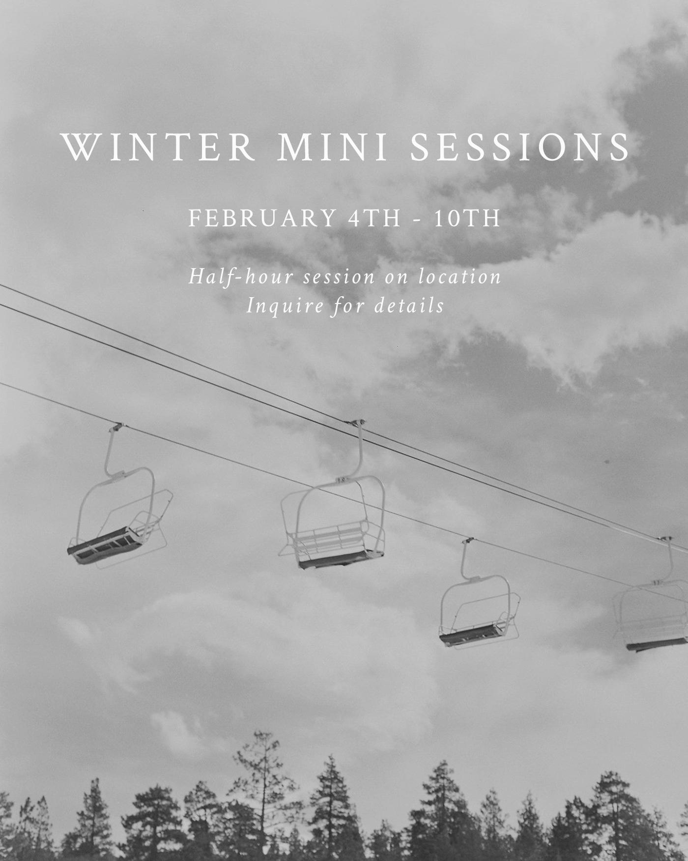 Mini-sessions_Winter2019.jpg