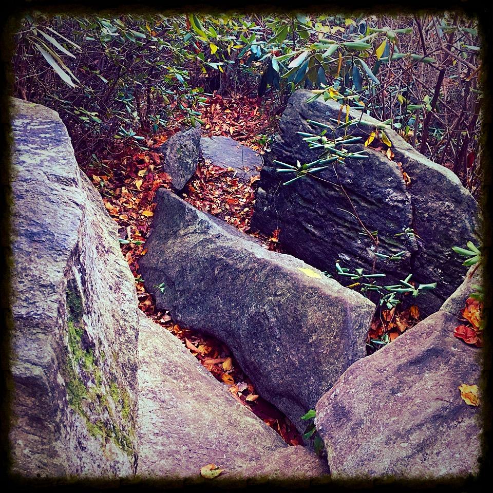 boulder fest.JPG