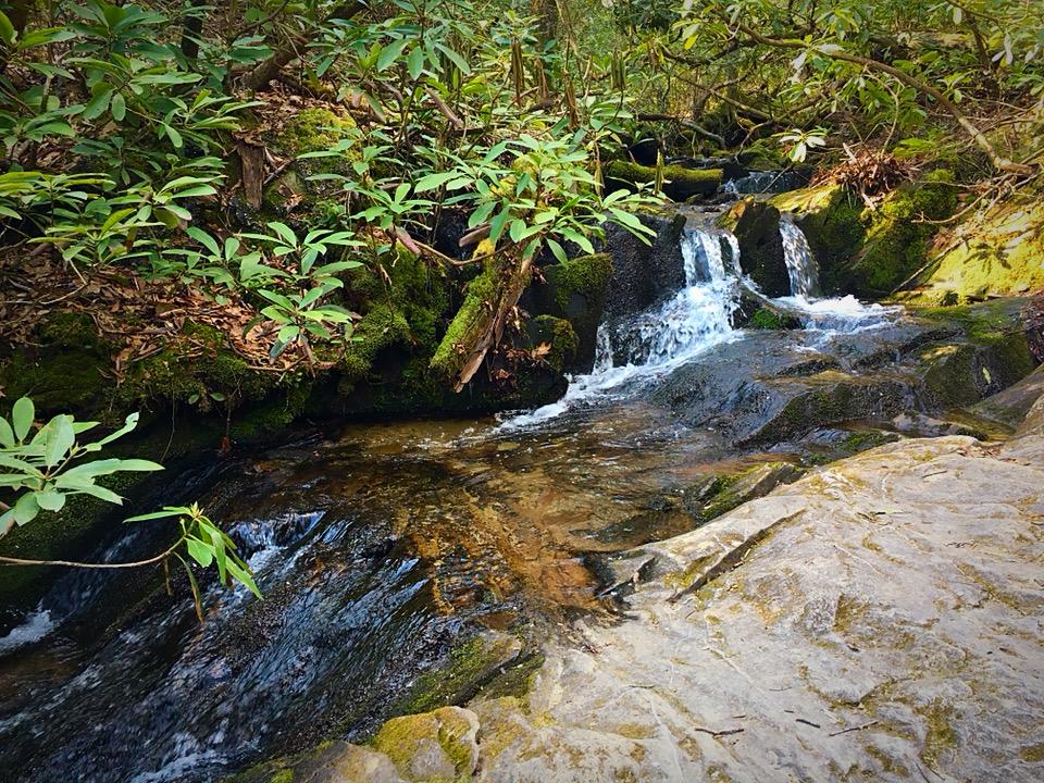 Small cascade on Bee Tree Creek.