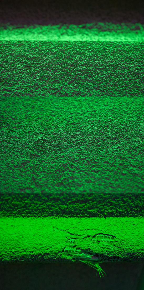 03_green.black.jpg