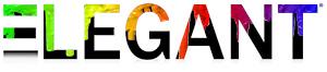 Elegant Magazine - Logo - rainbow.jpg