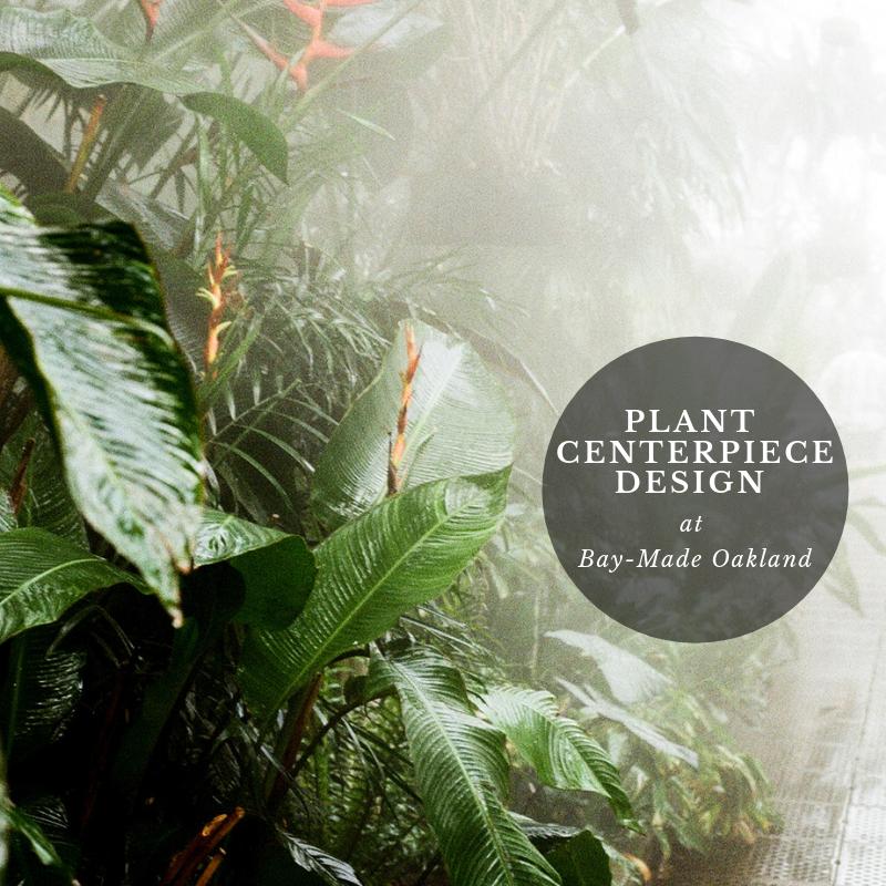 Plant Centerpiece Design.png