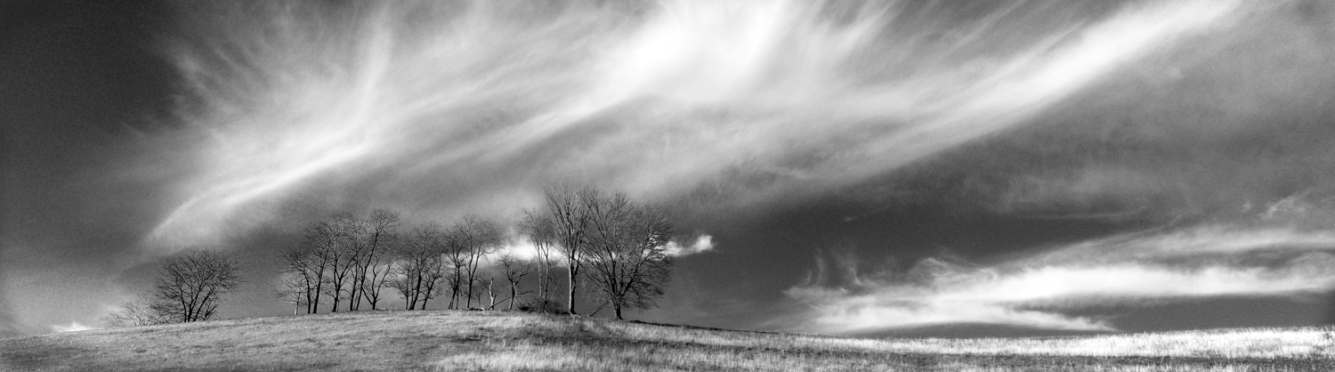 2nd Place B&W-Honeywell Center Photography Show 2010