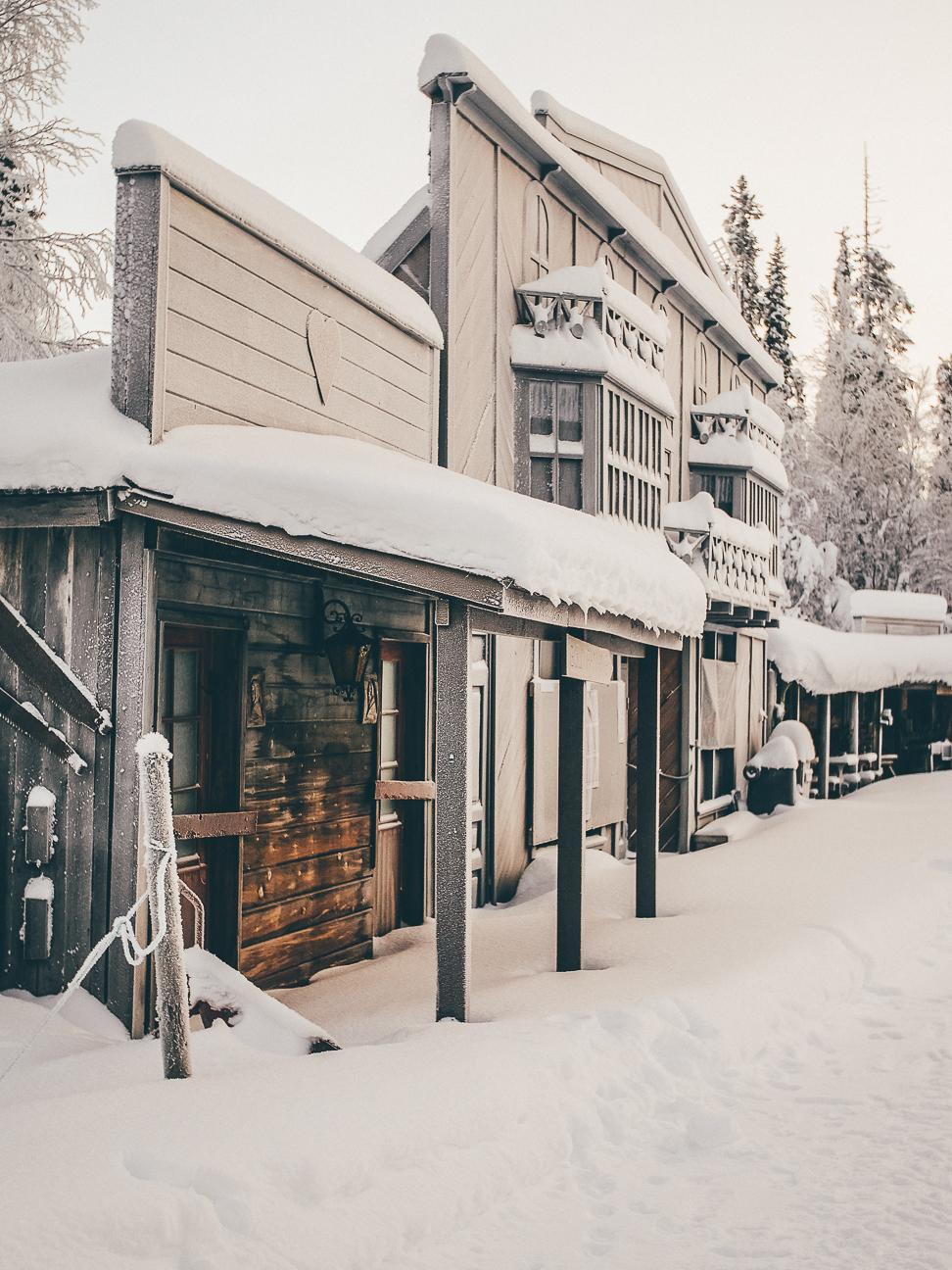winter 2017-9.JPG