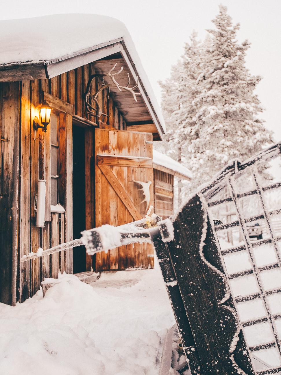 winter 2017-15.JPG