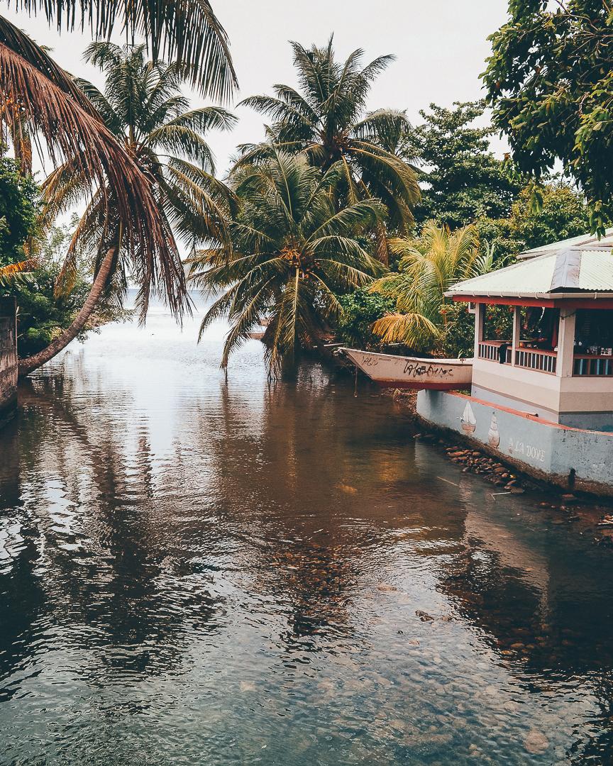 Dominica-7.JPG