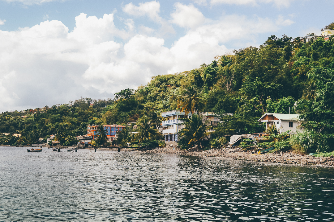 Dominica-12.JPG