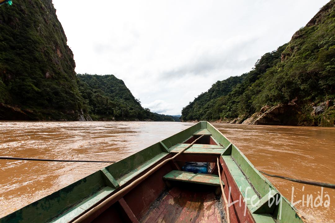Madidi-Jungle-Tour-Bolivian-Amazon-17.JPG