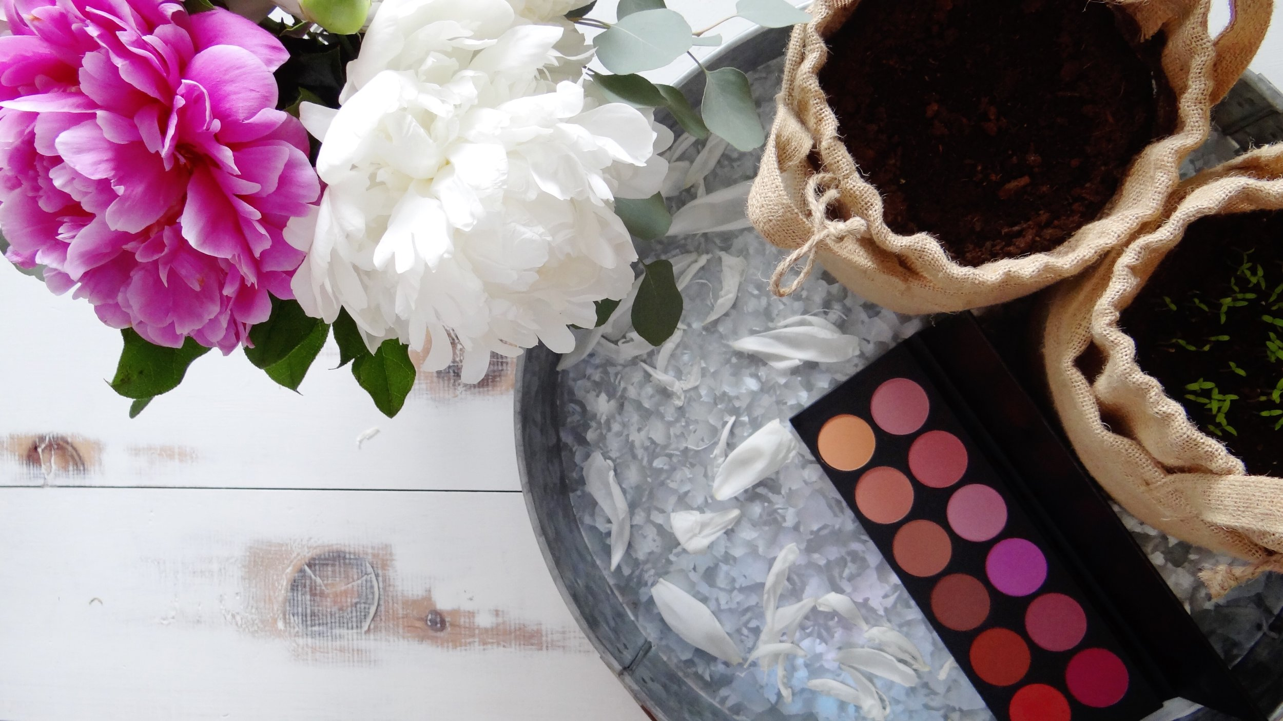 Building a Cruelty-Free Professional Makeup Kit: Blush - Artistry by Jacquie, Ottawa Makeup Artist